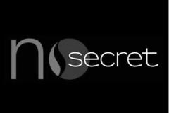 Logo NoSecret